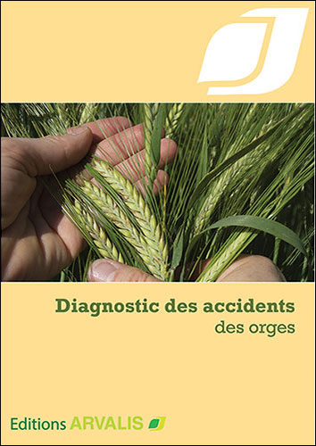 Diagnostic des accidents des orges